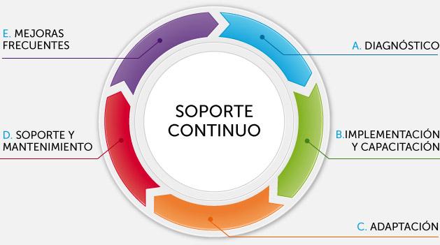 ras_salud_grafico_soporte_continuo